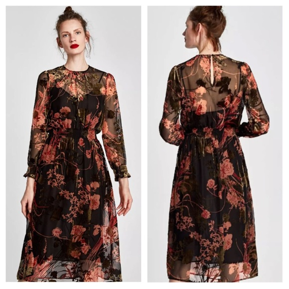 871805ae0cc Zara burnout Velvet Floral midi dress